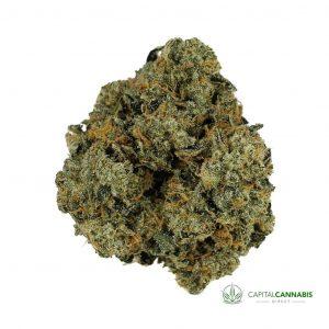 HIGH OCTANE - 5 Grams