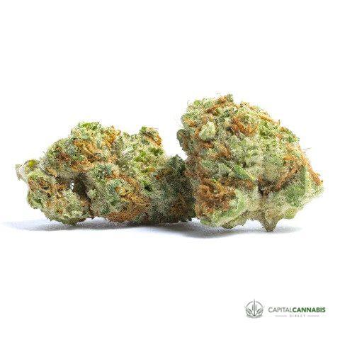 PRIVATE RESERVE - PAPAYA PUNCH - 5 grams