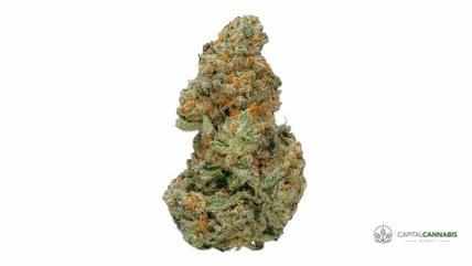 XJ-13 - 5 Grams of weed
