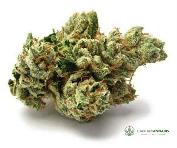 SFV OG - 5 Grams of marijuana