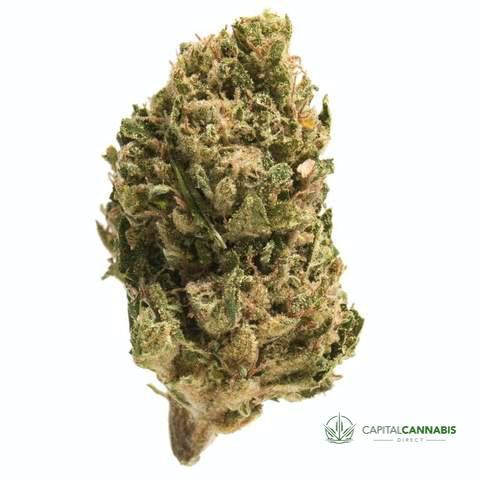 SOUR DIESEL - 5 Grams of weed