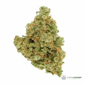 GREEN CRACK - 5 Grams
